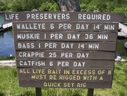 Fishing in Illinois-Catch and Release
